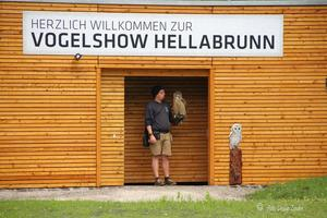Greifvogel Show in Mnchen Hellabrunn