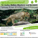 Wildkatzenlauf fr Lufer, Walker, Wanderer und Bambinis