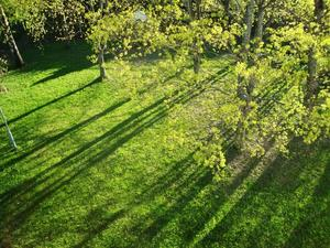 Am 16. Mai 2013  -  die Schatten in der Abendsonne