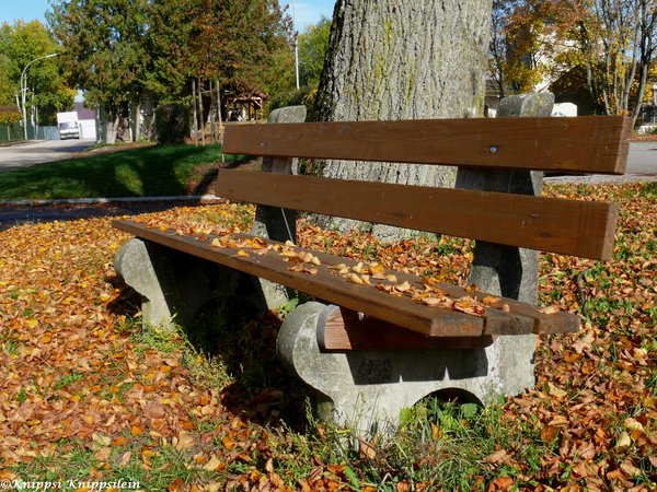 herbst, bank, pause, sonnenbad, holzbank