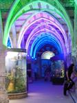 Brighton Sea Life Centre UK for lighting up Blue Purple and Green all day for Awareness Day