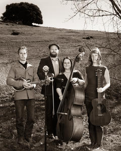 Foghorn Stringband , Photo by  Mike Melnyk