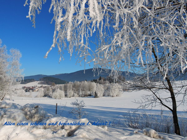advent, winterbild