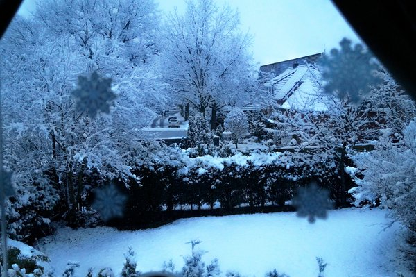 winter, schnee, frostig, winterbild