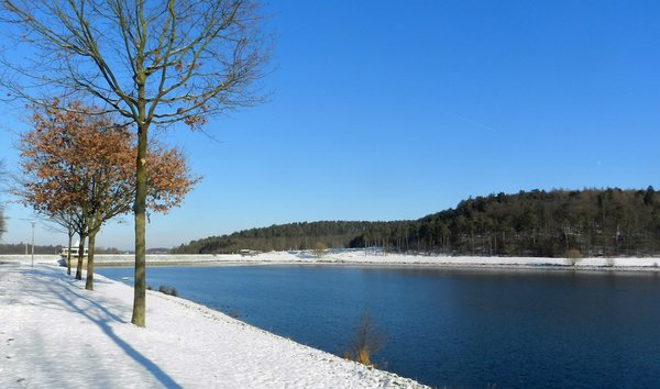 winter, twistesee