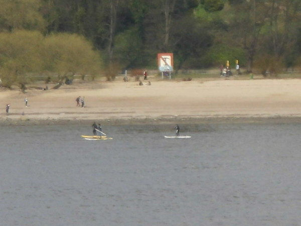 elbe, stand-up-paddling