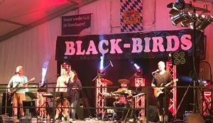 Partyband Black-Birds
