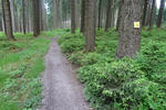 Trail am Rabenberg