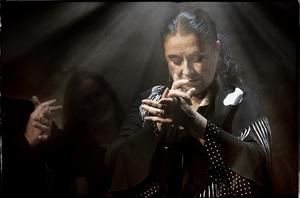 15. Flamenco-Camp Birkenried: Flamenco-Fiesta