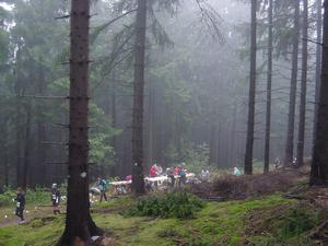 39. Harz-Gebirgslauf Wernigerode