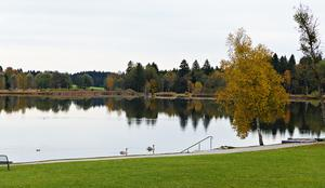 Herbst am Soier See