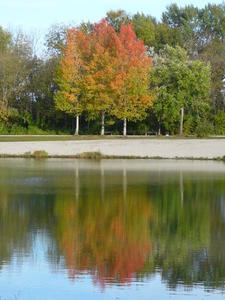 Indian Summer am Kuhsee