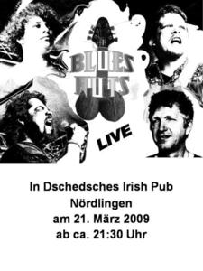 BLUES NUTS Live in Concert