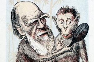 DARWIN-Karikatur (1874 london sketchbook)