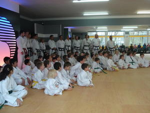 Taekwondo Kinderturnier im TWIN-Center Augsburg
