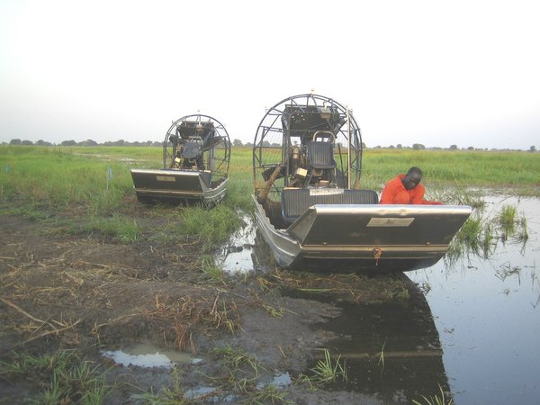 airboat   sumpfboot  - pattensen