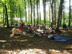 Picknick in lauschiger Atmosphäre