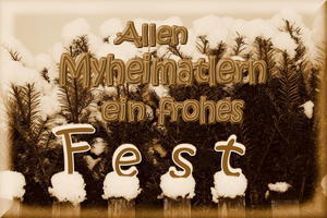 'Frohes Fest'