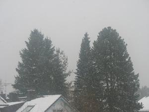 Winter in Waldperlach, Teil 57