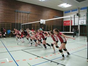 DJK Volleyball Teams meisterlich