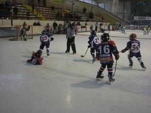 Torfestival der SCL Bambini Jets (A)  in Braunlage