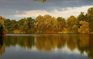 Goldener Herbst in Dungelbeck am Kiessee