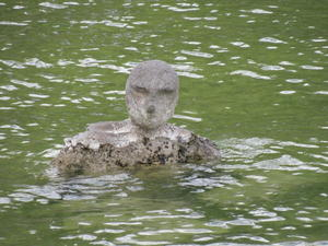 The creature from The Ammersee