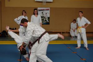 2. Grimmaer Budo-Workshop
