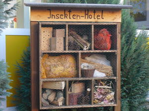 Insektenhotel im 'East Side'