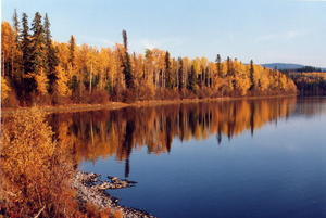 'Indian Summer' am Fleming-Lake in British Kolumbien (Kanada)