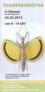 Flyer Insektenbörse in Dessau