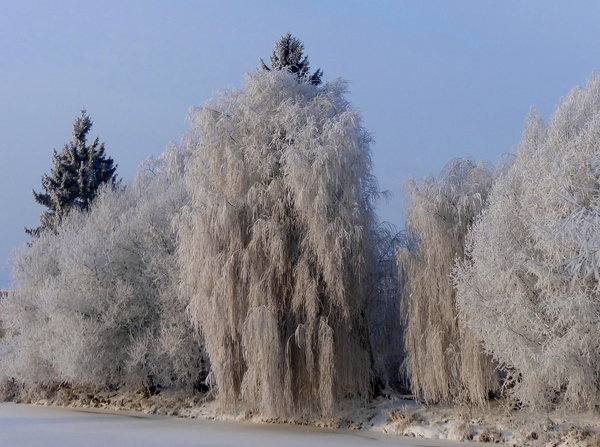 winter, winterimpression
