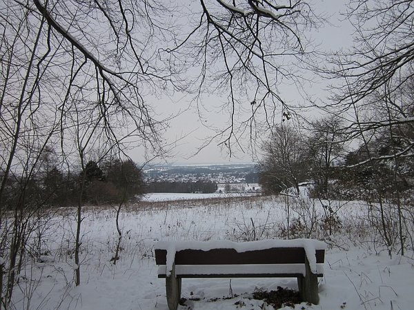 winter, dümmer-see