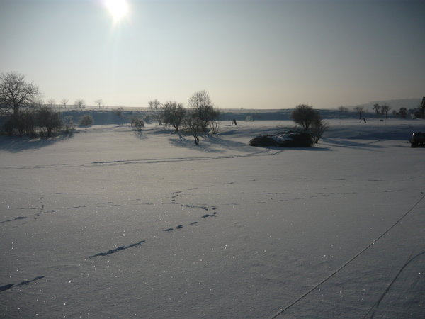 winter, kälte