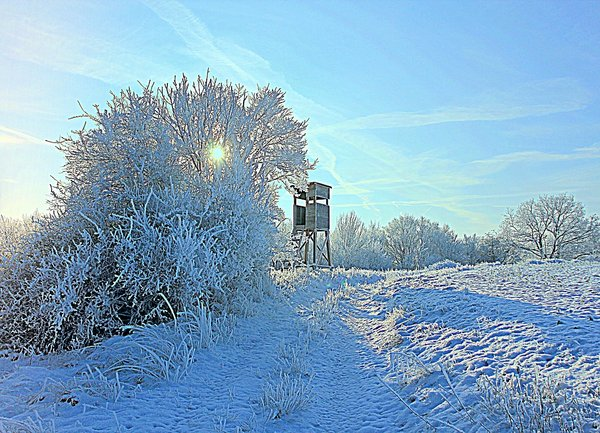 winterlandschaft, morgensonne