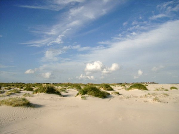 sandstrand, amrum, sandiges