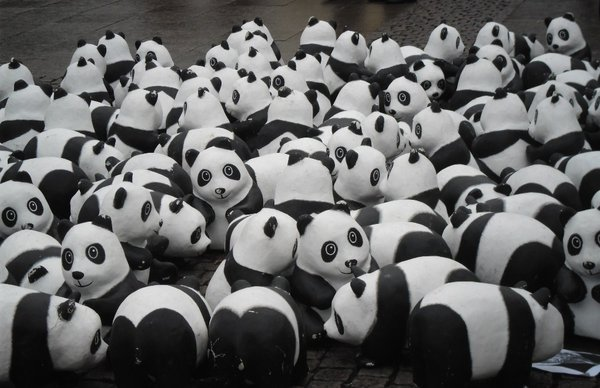 hamburg, pandas, wwf-aktion