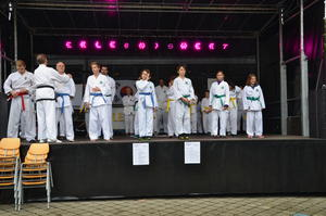 Taekwondo Center Friedberg auf der Messe 'WERTA 2013'
