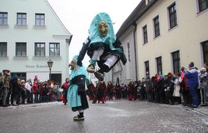 1. BSF - Narrensprung 2014