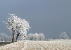 Winter im Waldecker Land