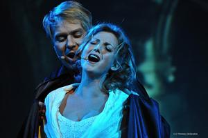 MUSICAL MOMENTS, Die witzig-charmante Musical-Show