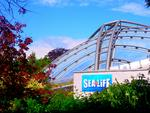 . . . SEA LiFE in Hannover-Herrenhausen . . .