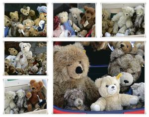 Collage, Teddy's