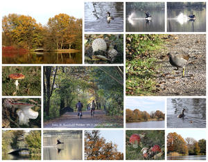 Collage, 'Herbststimmung'