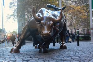 Der Bulle bei der Wall Street in New York City im November 2014