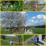 Ostermontagsspaziergang - Collage !