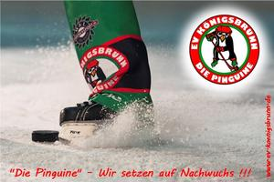 Eishockey - Juniorenteam beendet Saison