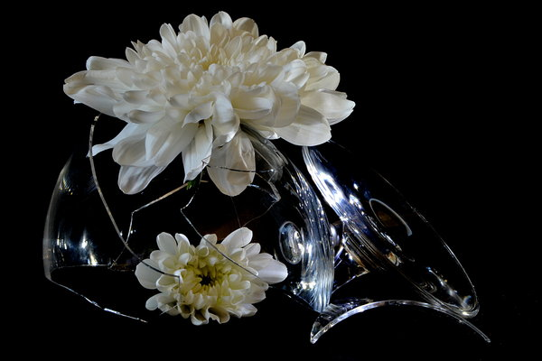 blumen, gedanken, blüten, nahaufnahme, wwwglas-und-artde, renate-croissier-in-lünen, renate-croissier, table-fotografie, glas, reim, chrysanthemen, scherben