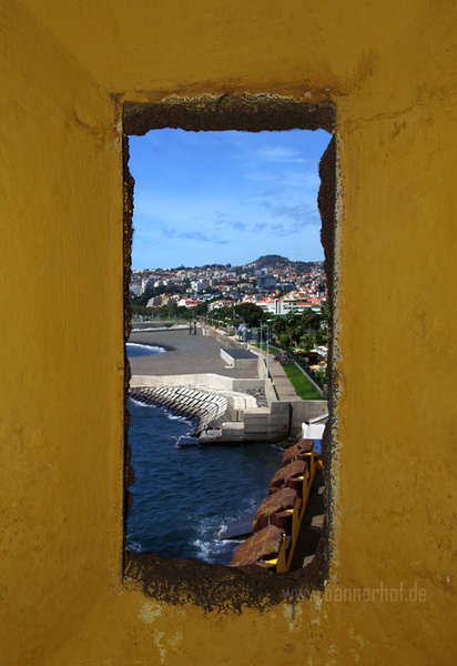 sommer, urlaub, meer, insel, madeira, funchal