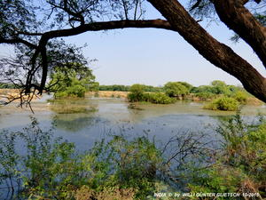 Keoladeo-Nationalpark Indien